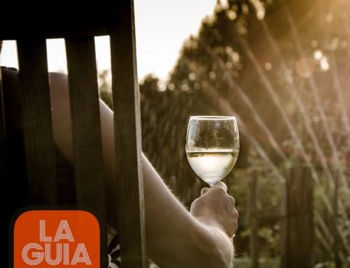 SOFTWARE DE GESTIÓN: LA GUÍA DE VINOS DE CATALUÑA